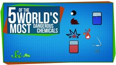5 of the World's Most Dangerous Chemicals They explode when you touch them. Even a millionth of a gram can kill you. They can even disable you with their horrifying smell. SciShow introduces you to give of the most dangerous chemicals in the world. Chemistry Classroom, Ap Chemistry, Teaching Chemistry, Chemistry Lessons, Chemical Science, Chemical Reactions, Science Videos, Always Learning, Educational Videos