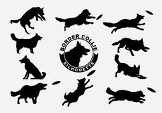set of Border Collie Silhouette on white background, 100% vector #bordercollie