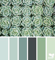 Explore Design Seeds color palettes by collection. Colour Pallette, Colour Schemes, Color Combos, Decoration Inspiration, Color Inspiration, Palette Verte, Decoration Palette, Cactus E Suculentas, Pantone