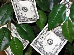 Guide to Wedding Money Trees