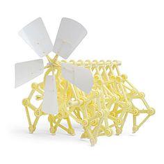 Strandbeest Kit- Found them on Ebay at a reasonable price.