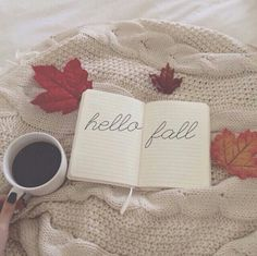 Hello Fall! I've waited all year for you!