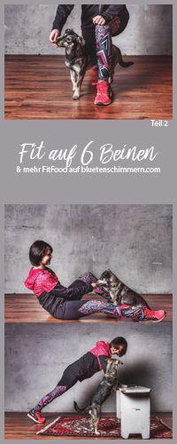 TEIL 2 der beliebten #Fitauf6Beinen Reihe!  So wirst Du #tierisch #fit! Spannende #Fitnessübungen für Dich & Deinen Hund. Werde auch Fit auf 6 Beinen und laste Deinen #Hund beim #Fitnessworkout geistig aus. #hunde #hundeblick #hundeliebe #hundeblog #hundeblogger #fitness #fitmithund #fit #mit #hund #tierischfit #tierisch #übungen #übungenmithund #fitnessübungen #workout #fit #durch #2017 #abnehmen #bewegung #fitspo #fitness #motivation #inspiration #fit #werden