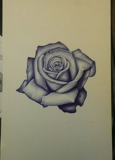 CLOVIS INK TATTOO....Realism rose sketch. Art, flower, tattoo, drawing, follow on instagram @rudyta2