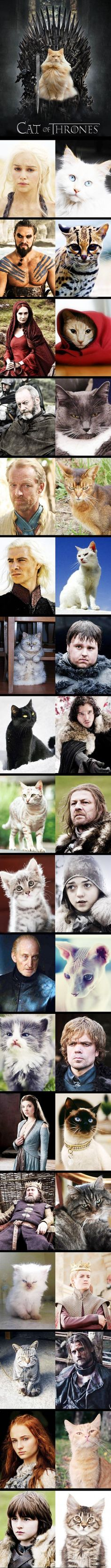 Cat Of Thrones--Game of Thrones characters and their cat doppelgangers