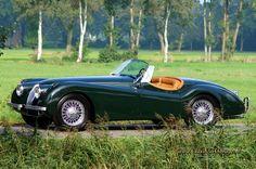 Je vous présente le modèle de mes rêves. Point.  1953 Jaguar XK120
