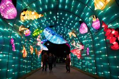 People stroll beneath an undersea display on the opening night of the China Lights lantern festival Friday, January 19, 2018, at Craig Ranch Regional Park in North Las Vegas. The festival, which features nearly 50 silk and LED light displays comprised of over 1000 elements, runs through February 25th. CREDIT: Sam Morris/Las Vegas News Bureau