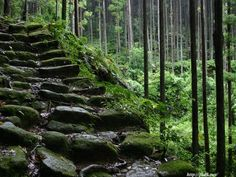 kumano-kodo, wakayama the ancient road in japan, designated as a world heritage site in 2004.