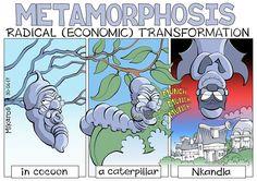 Zuma's radical transformation