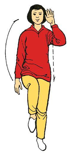 17. Botar en el suelo una pelota o ( cambiar el ejercicio por nadar flexionando rodillas ) Mejora la coordinación y el equilibrio Desarrolla la capacidad de concentración y atención.