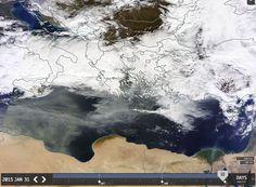 Thisisbignews.gr: Άκρως επικίνδυνη η Αφρικάνικη που έχει καλύψει τη ...