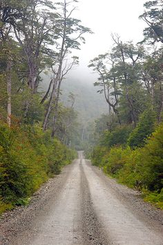 Carretera Austral: tramo Caleta Tortel-Puerto Yungay