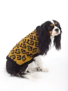 Knit this leopard print sweater for your bestest furry friend.  Make a statement and knit a matching hat for yourself.