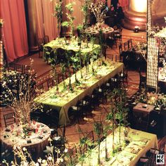David Tutera....this appears to be an Asian Garden theme. I love the screens on some of the tables and the bamboo greenery on the others. and then famous cherry blossoms in vases for three different looks throughout the ballroom.