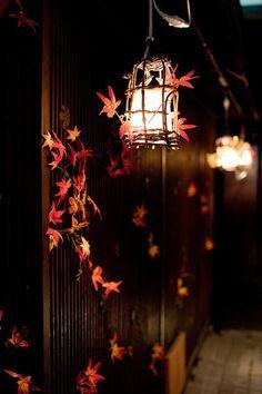 Autumn Leaves and lanterns Autumn Day, Autumn Leaves, Dark Autumn, Fallen Leaves, Wallpapers Tumblr, Autumn Aesthetic, All Nature, Candle Lanterns, Lantern Lighting