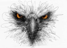 Creative Art with Pen Stroke Drawings by Erick Centeno 003 Realistic Animal Drawings, Amazing Drawings, Art Sketches, Art Drawings, Tatto Love, Eagle Drawing, Scribble Art, Nature Sketch, Pen Art
