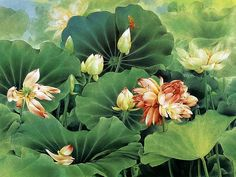 Flowers and Birds, Chinese Gongbi Paintings by Zou Chuan An  - Chinese Gongbi Paintings : Bird-and-flower painting Wallpaper 2