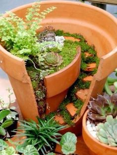 fairy garden in a broken pot