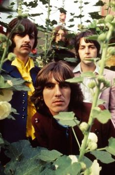The Mad Day Out Photo Session | The Beatles