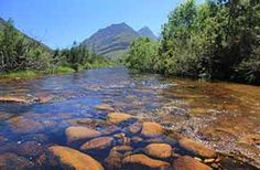 Dwarsberg 100 km from CT.  Nice swimming.  Near Rawsonville. Campsite 4 shade and pool. Also cottage best poz Tant Sarie sleeps 4.