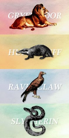 I love Ravenclaw! Although I do wonder why it isn't a raven...