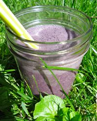 Wild Mulberry Smoothie
