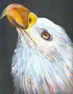 Cece Giroux Did an amazing painting of the Eagle lesson we had last week. Look how the eyes bring real intensity to this magnificent Bird.