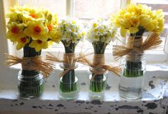 DIY raffia daffodil bouquets I love the small middle ones. Just add a bit of purple and maybe some white roses. Spring Wedding Flowers, Summer Wedding, Dream Wedding, Spring Weddings, Chic Wedding, Daffodil Bouquet, Welsh Weddings, Diy Wedding Cake, Painted Mason Jars