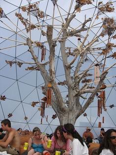 Autumn Dome at Coachella '07 - part of a 4 season series