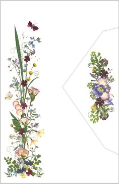 Marion's Pressed Flowers