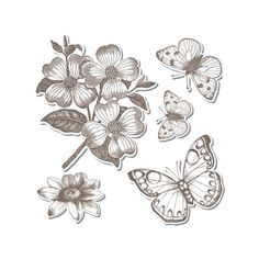 Hero Arts & Sizzix Stamp & Diecut Set, Antique Flowers and Butterflies