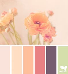 Flora Tones   design seeds   Bloglovin'