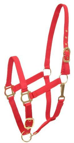 This is a halter, later I'll post a link to general horse care for an fyi to all horse owners if that's okay