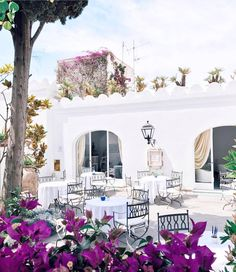 """2,202 Likes, 21 Comments - #prettylittleitaly (@_prettylittleitaly) on Instagram: """"All the small details make this picture absolutely perfect ! 😍🌹🌳 #capri #southofitaly…"""""""