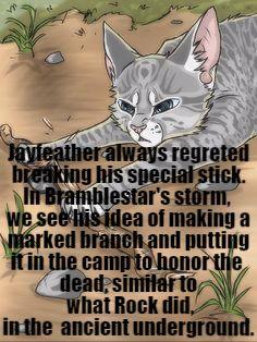 17 Best Jay Bae Warrior Cats Images Warrior Cats Warrior Cats