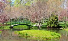 Monet bridge at Gibbs Garden, North Ga.