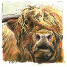 #Artist Profile - Jo McGrath. Highland bull.