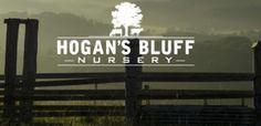 hogans-bluff-nursery-6ix