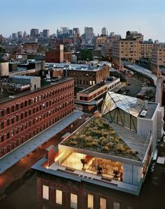 Diane von Furstenberg's penthouse perched atop her meatpacking district corporate headquarters, was designed by the architecture firm WORKac | via Creatives in their Spaces ~ Cityhaüs Design
