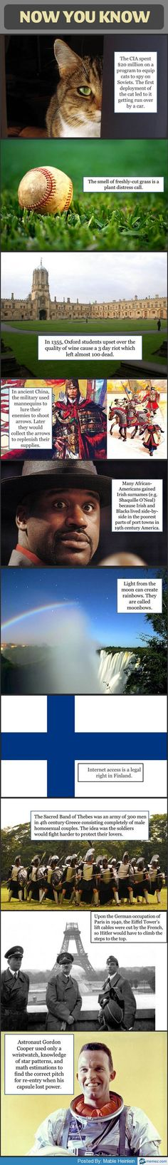 Cool facts you didn't know