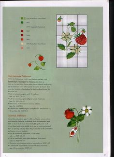 Puntocroce Acufactum-Sommergaeste (47)