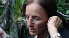 Jornalista espanhola libertada na Colômbia