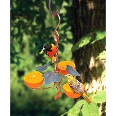 Songbird Essentials Copper Oriole Triple Fruit Bird Feeder with Ivy