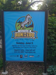 Lincoln park zoo run 2011