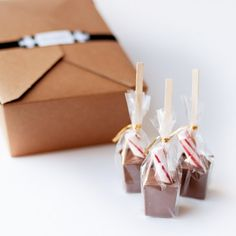 Hot chocolate on a stick w/ a peppermint garnish.