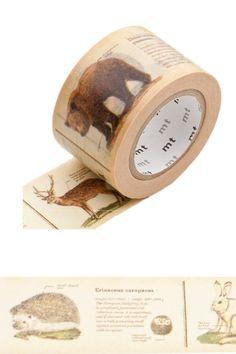 Masking-Tape Ex, encyclopedia animal Maskingtape