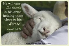 Scripture - Psalm 23 - Day 1 - Psalm 23 Love and Loss Scripture Verses, Bible Verses Quotes, Bible Scriptures, Vida Animal, Mundo Animal, Lord Is My Shepherd, The Good Shepherd, Farm Animals, Cute Animals