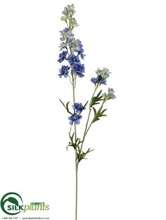 Larkspur Spray - Blue Two Tone - Pack of 12