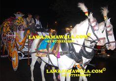 11 Best #DOLI Raju + 91 9772222567 #DHOL ##CHATTAR #GHORI