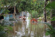 Rạng sáng ngày 10/10, một đoạn đê tại Cồn Khương (khu vực 3, Cái Khế, Ninh Kiều, Cần Thơ) bị vỡ. Hơn 20 hộ dân bị nước nhấn chìm; nhiều vườn cây ăn trái, ao cá bị thiệt hại nặng nề; cuộc sống của người dân bị đảo lộn. http://ole.vn http://ole.vn/tin-the-thao.html http://xoso.wap.vn/ket-qua-xo-so-mien-nam-xsmn.html